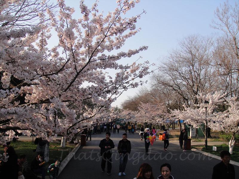 ZhongShan Park Qingdao